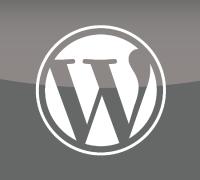 eye_wordpress